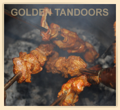Chicken Tikka in the Home Tandoor