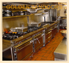 Golden Tandoor in a Banquet Kitchen - USA