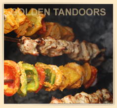 Vegetables & Tikkas in a Tandoor Oven